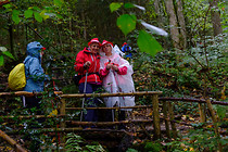 orf_wanderung_attersee_0005.jpg