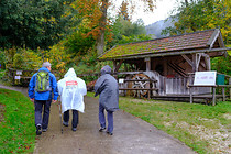 orf_wanderung_attersee_0012.jpg